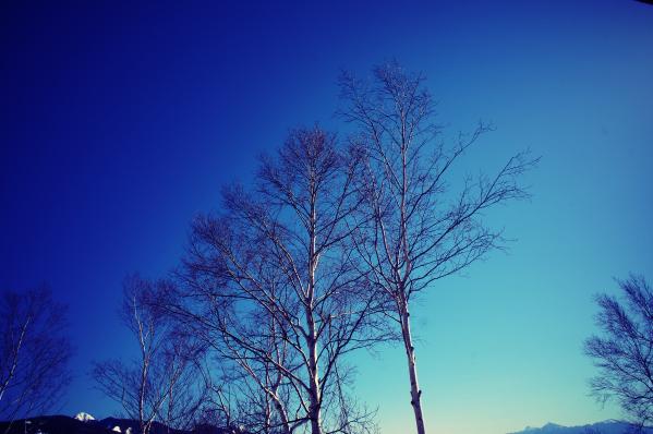 DSC08815_Fotor.jpg